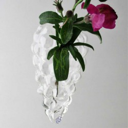 Glas Traube Vase klar...