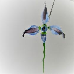 Orchide von  vittorio...