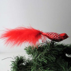 kleiner Vogel rot mit...