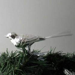 kleiner breiter Vogel,...
