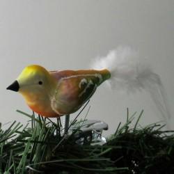 kleiner Vogel matt ,  Feder...