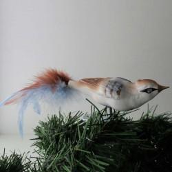 kleiner Vogel,  mit...